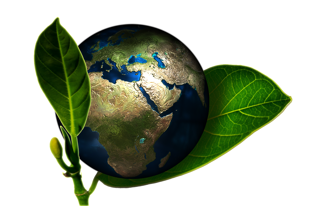 keep the earth beautiful